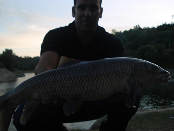 Barbo 2,5 kg 20 Setembro 2009