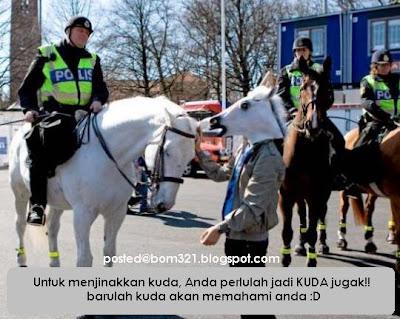 Cara Untuk Menjinakkan Kuda