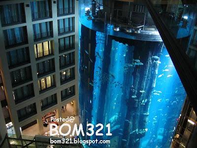AquaDom, Radisson Hotel Aquarium