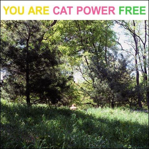 [catpower1]