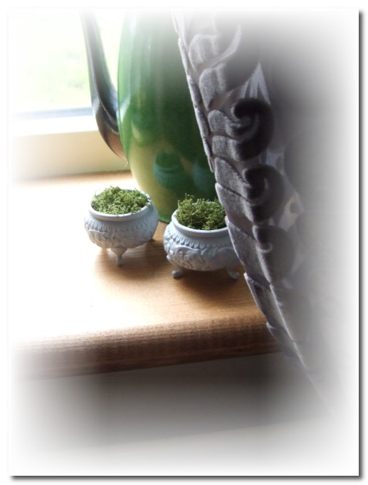 2 little salt pots with moss