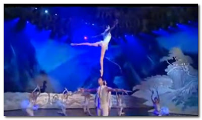 the great chinese state circus swan lake