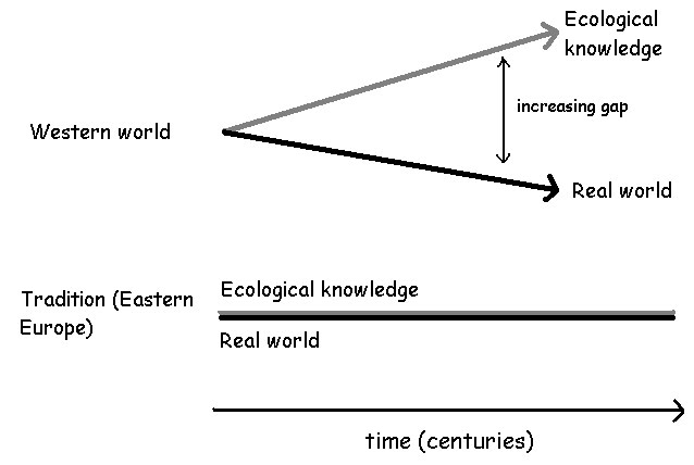 thesis on traditional ecological knowledge From traditional ecological knowledge: and ethnologists provided additional indications and examples of the extent of traditional knowledge phd thesis.