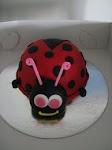 ladybug 12.11.09