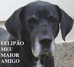 FELIPÃO