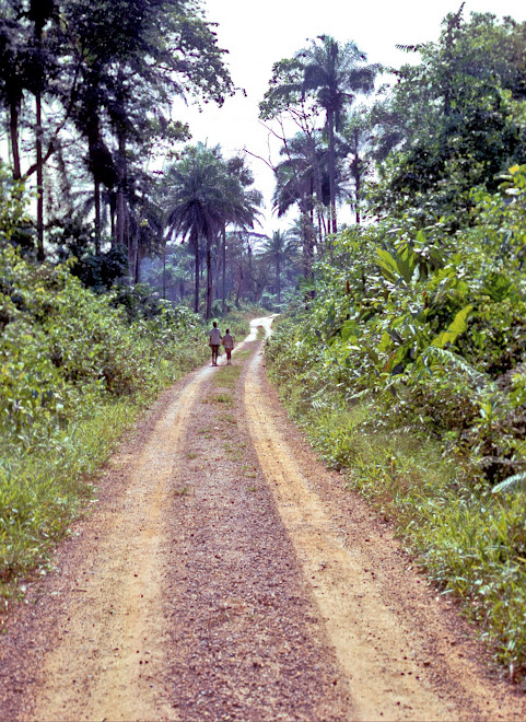 the main road to Foindu (Nongowa)