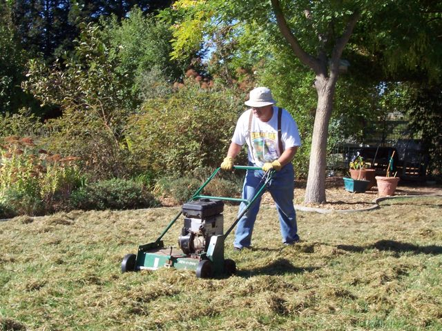 ordinary best time to dethatch lawn Part - 13: ordinary best time to dethatch lawn amazing pictures