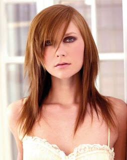 Long Straight Layered Hair Styles