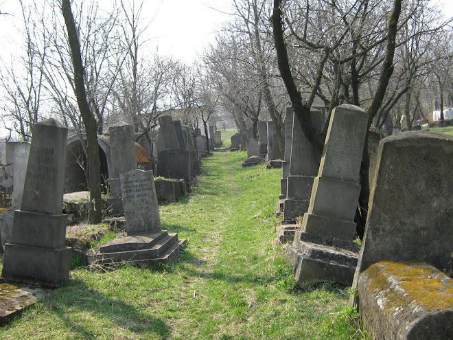 Cimitirul evreiesc, Ştefăneşti, Jud. Botoşani