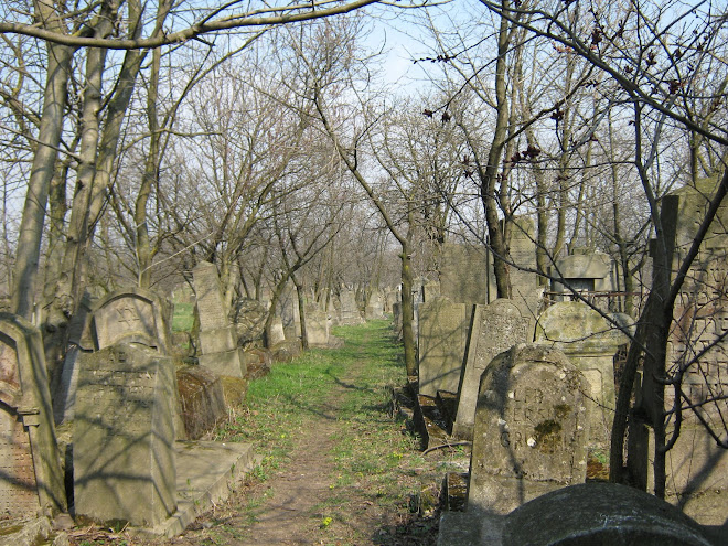 Cimitirul Evreiesc din Ştefăneşti, Jud. Botoşani