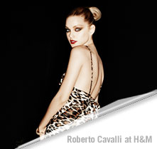 Indy Excluded from Roberto Cavalli