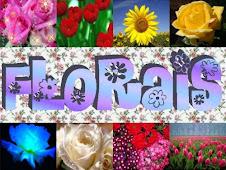 Essências Florais: