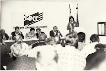 REUNIÓ CC DEL PCC 1991