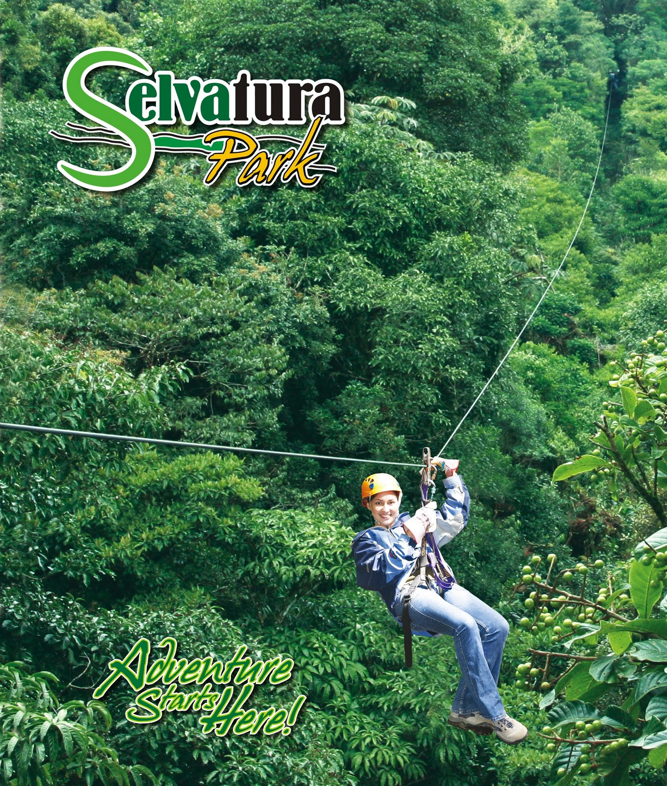 Zip-lines above the canopy are in many ways synonymous with Costa Rica. Originally introduced during the 1970s zip-lines have developed into one of the ...  sc 1 st  Monteverde Sloth Backpackers & Monteverde Sloth Backpackers Bed u0026 Breakfast: Zip-lines above the ...