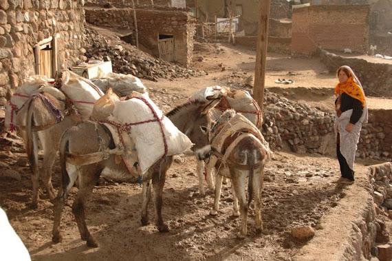 Tabríz Írán