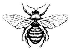 http://3.bp.blogspot.com/_lhmazxcCTLU/SeYqq3-7HEI/AAAAAAAAA_0/vZ4FXkSxsf4/s400/Symbol+Bee.jpg