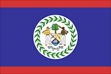 MY BELIZEAN FLAG