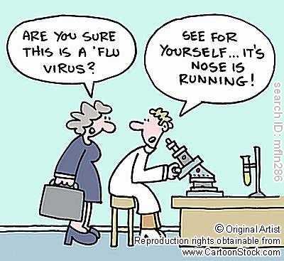 Swine Flu Cartoon