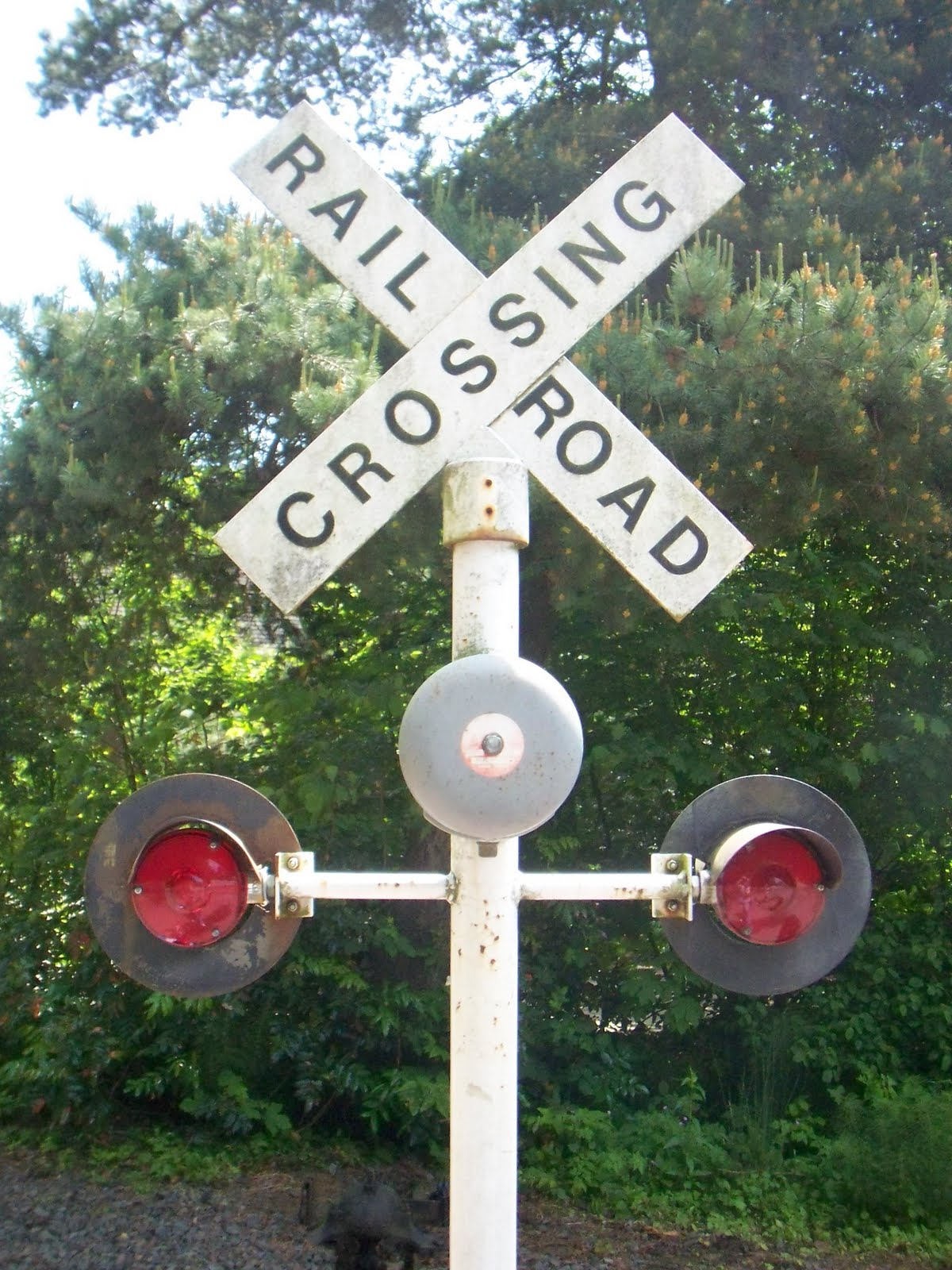 teaching the girls about railroad crossing at the zoo