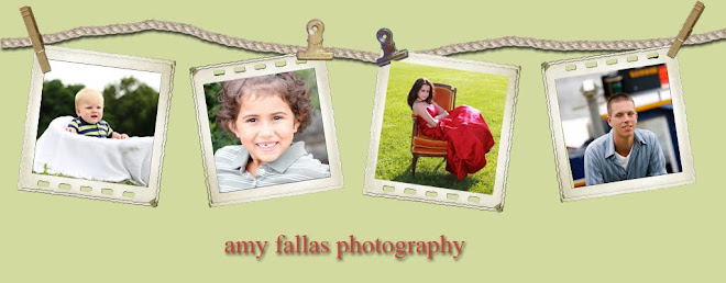 Fallas Photography
