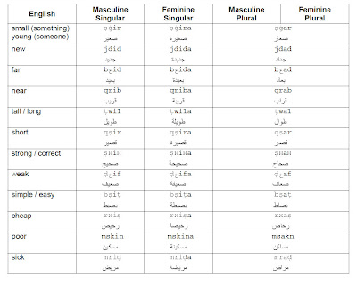 Learn moroccan arabic language common adjectives continue