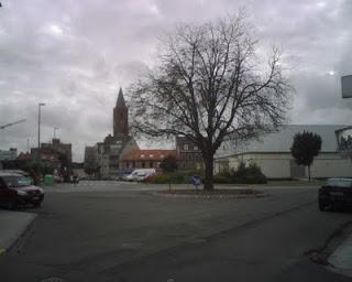 Bevrijdingsboom in Zelzate