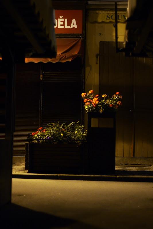 Prague - Flowers in Havelska street
