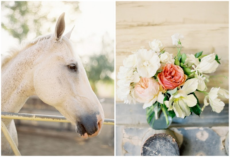 cream colored ponies crisp rhubarb strudels equestrian shoot by jose villa on m loves m. Black Bedroom Furniture Sets. Home Design Ideas