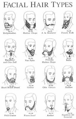 Funny Facial hair styles