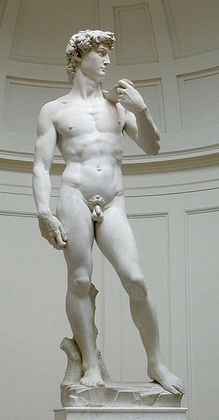 http://3.bp.blogspot.com/_lsVUwagwjMw/S9c_Ae-YqdI/AAAAAAAAAfQ/I8y58e49N5U/s1600/314px-David_von_Michelangelo.jpg