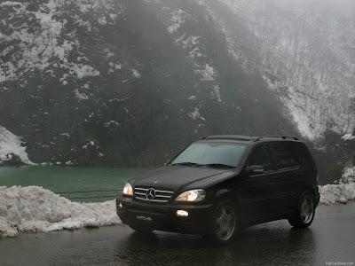 2007 Wald Mercedes Benz S Class W220. 2003 Wald Mercedes-Benz M-