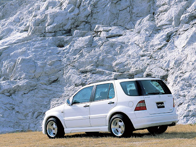Wald Mercedes-Benz M-Class (1999)