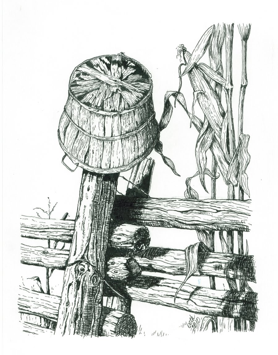 Pen And Ink Illustrations : Drawing ink pens