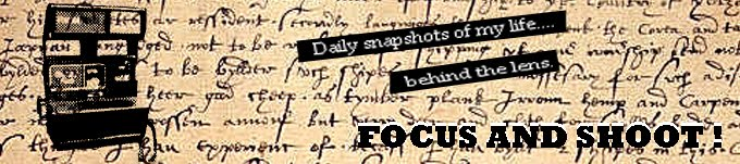 Focus and Shoot
