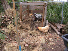 Time to turn the Compost