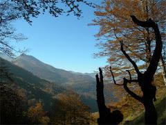www.lurmaitia.blogspot.com