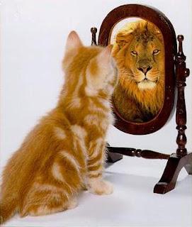 اذا عندك شجاعه انزل Cat-lion