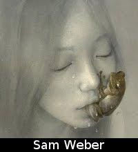 http://gimmemorebananas.blogspot.pt/2010/08/sam-weber.html