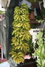 ALANYA Muz, Banana Alanya