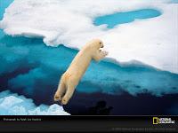 Последствия изменения климата