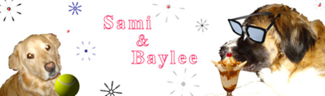 Sami & Baylee's World