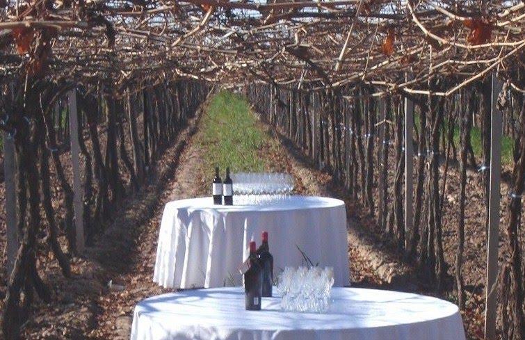 Evocaciones a la Carta y la Cata de Vinos...