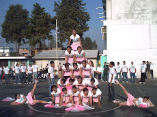 Piramide Humana