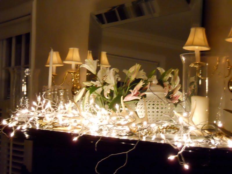 [Christmas+lights+2.jpg]