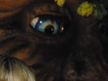 O Olho que Ver Tudo....Do Planeta....