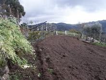 Março 2008 - II