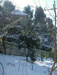 Neve em Janeiro