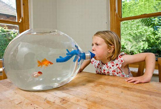 PictoVista: 15 Cool Fish Aquariums