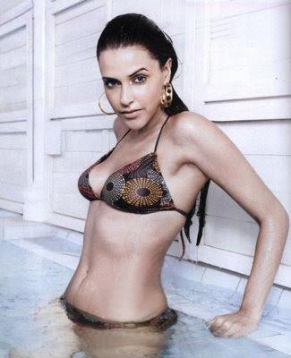 http://3.bp.blogspot.com/_m6lk7v8-qcg/TCQxVU3T73I/AAAAAAAAA2Q/69JVkSWQpFQ/s400/sonal-chauhan-bikini.jpg