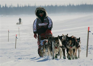 Evil Musher Ramy Brooks and his dogs